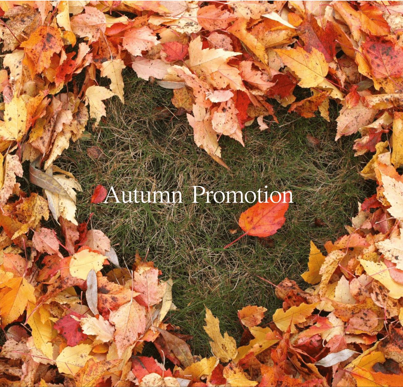 Autumn Promotion